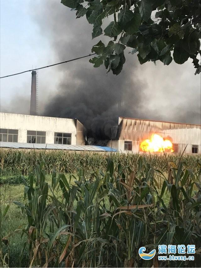 老丁字港附近仓库发生火灾  白酒炸声